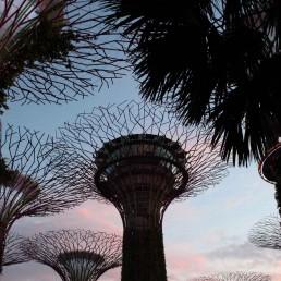 Urlaub von Meisterfloristin Franzi von Ganz Unverblümt in Singapur
