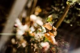 Natürliche Blumendeko von Meisterfloristin Ganz Unverblümt Straubing